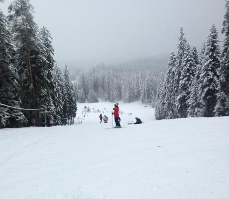 Реверсо ски лагер С дъх на зима Мальовица 2017 (35)