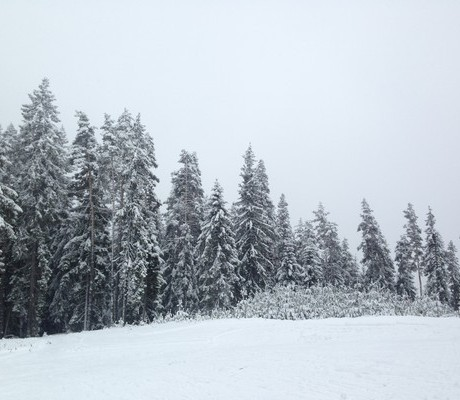 Реверсо ски лагер С дъх на зима Мальовица 2017 (37)