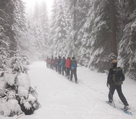 Зимна експедиция: По снежните склонове на Рила,  01 – 05 февруари 2019