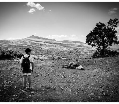 Детски лагер Източни Родопи 2017