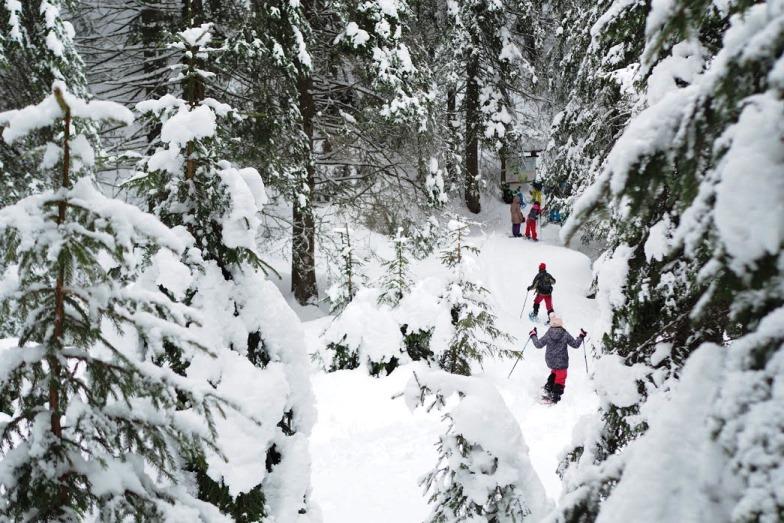 Зимен детски лагер 2020 - Белмекен за малките