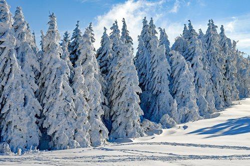 Зимен лагер Белмекен 2020